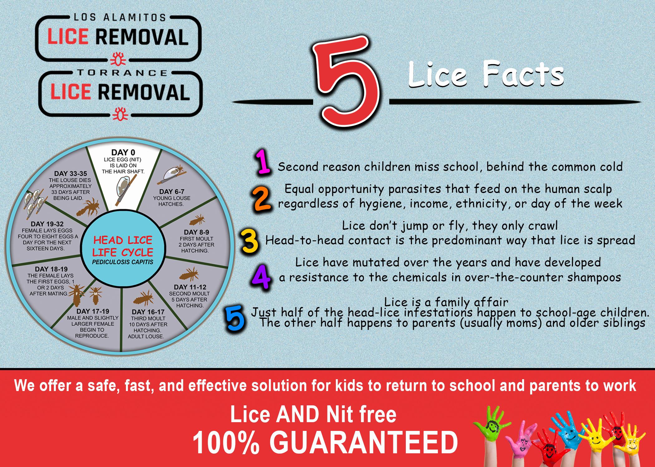 5_Lice_Facts_-_Los_Alamitos(1)